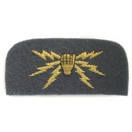 RAF Telecommunications Arm Badge