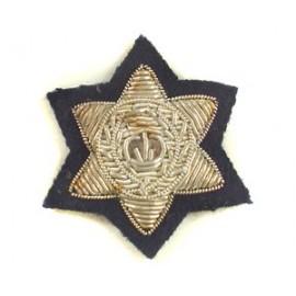 WESTERN AUSTRALIA POLICE STAR