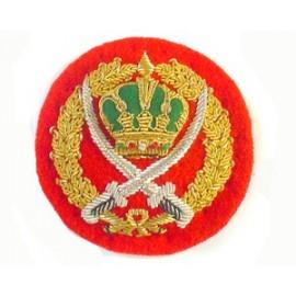 JORDAN ARMY COLONEL CAP BADGE