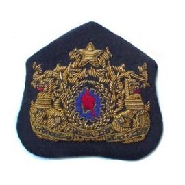 BURMA DEFENCE FORCE CAP BADGE